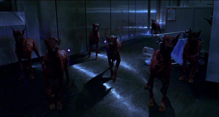 Perros de Resident Evil